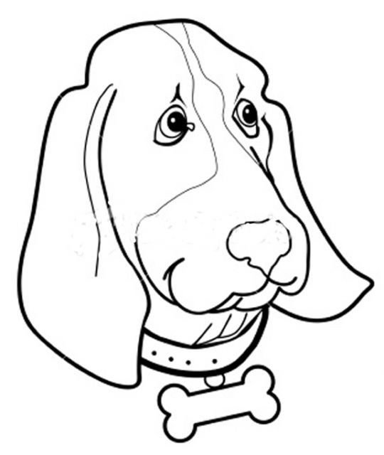 Outer Banks pet friendly homes kids coloring page